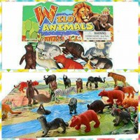 Wild Animals with Jungle Mat